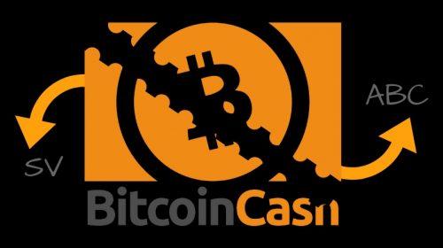 halving de bitcoin cash