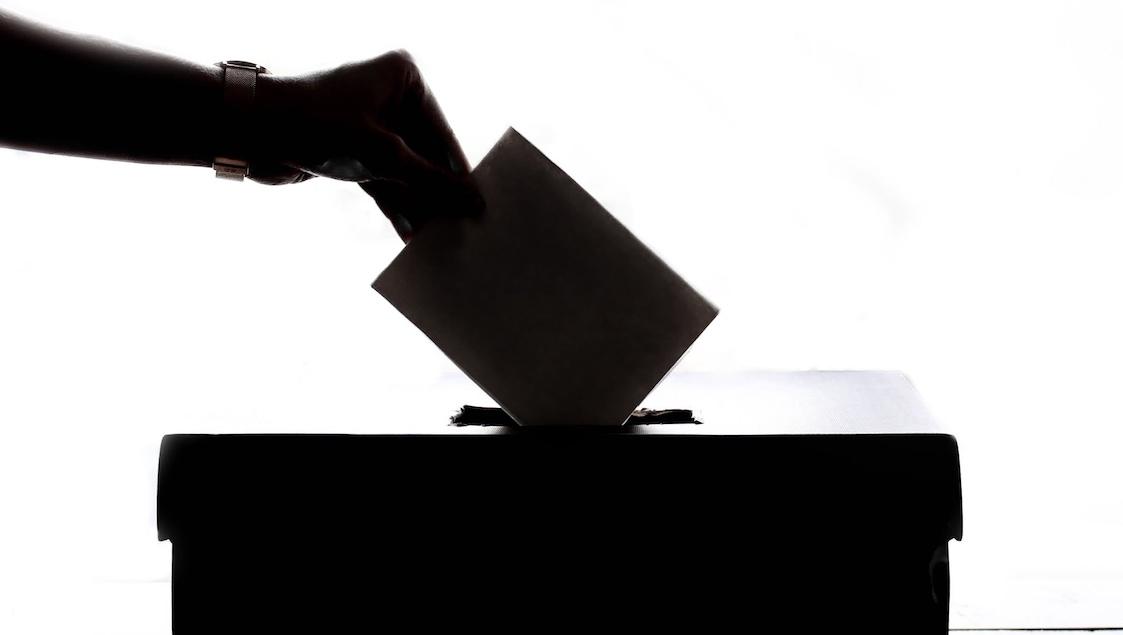 nem votacion pexels