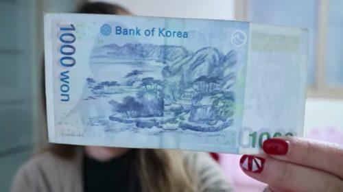 won coreano