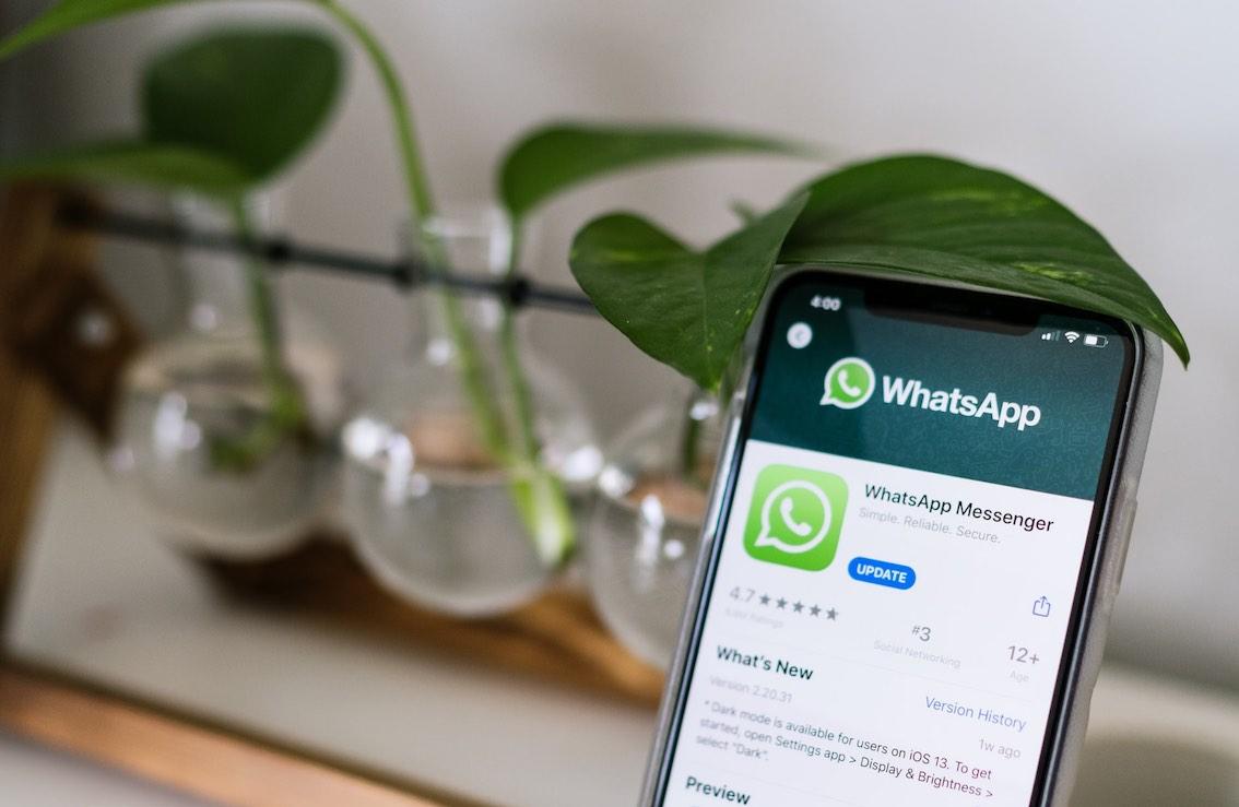 bitcoin whatsapp