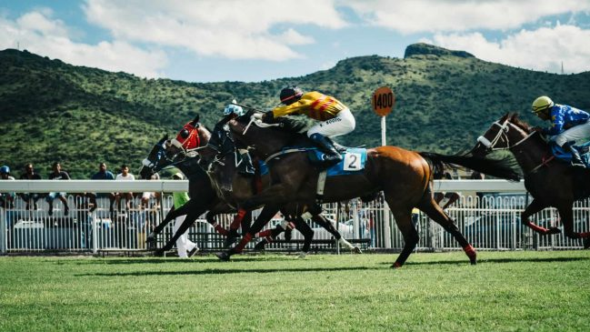 caballos-unsplash